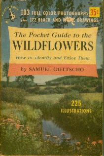Image for The Pocket Guide to the Wildflowers How to Identify and Enjoy Them