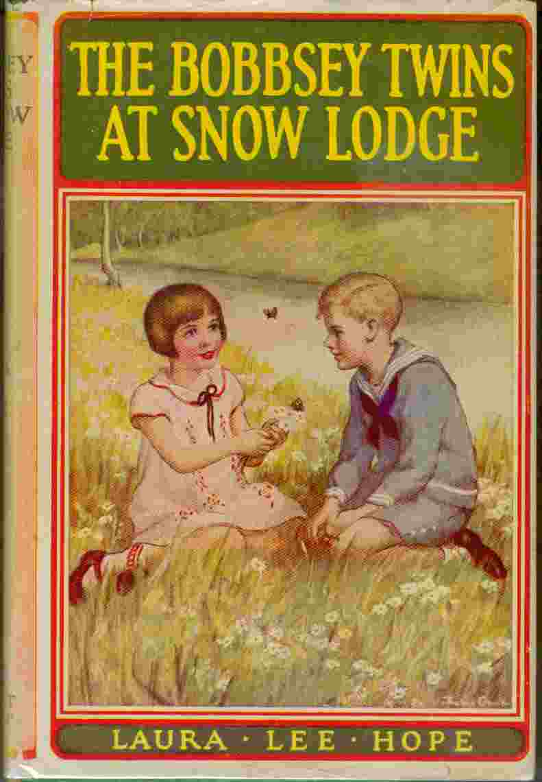 Image for The Bobbsey Twins at Snow Lodge