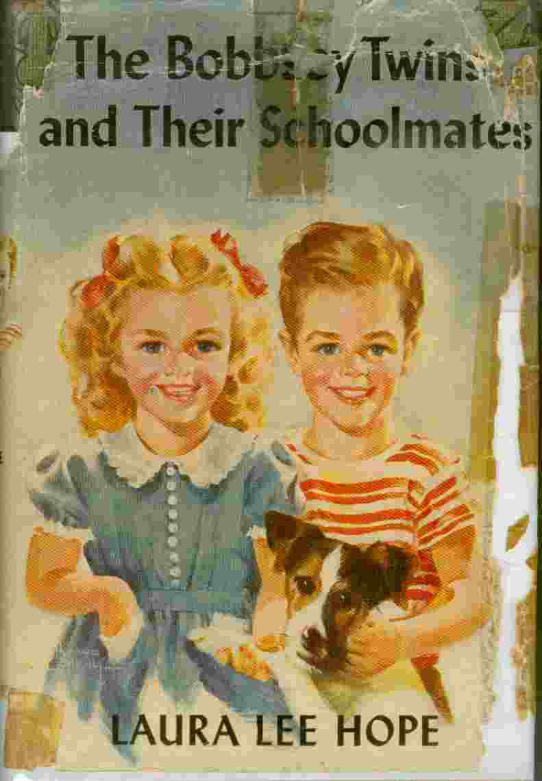 Image for The Bobbsey Twins and Their Schoolmates