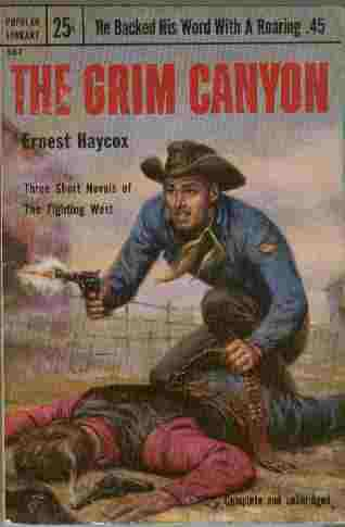 Image for The Grim Canyon - Three Short Novels of the Fighting West