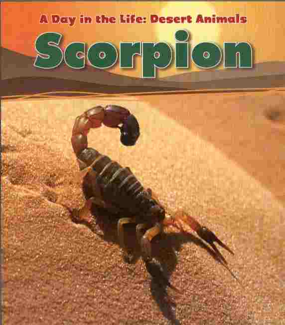 Image for Scorpion -- A Day in the Life: Desert Animals
