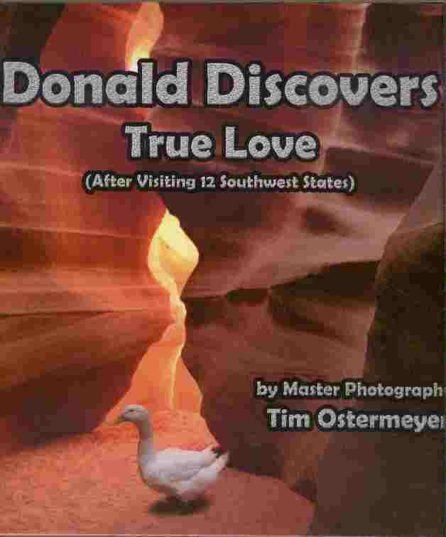 Image for Donald Discovers True Love  - (After Visiting 12 Soutwest States)
