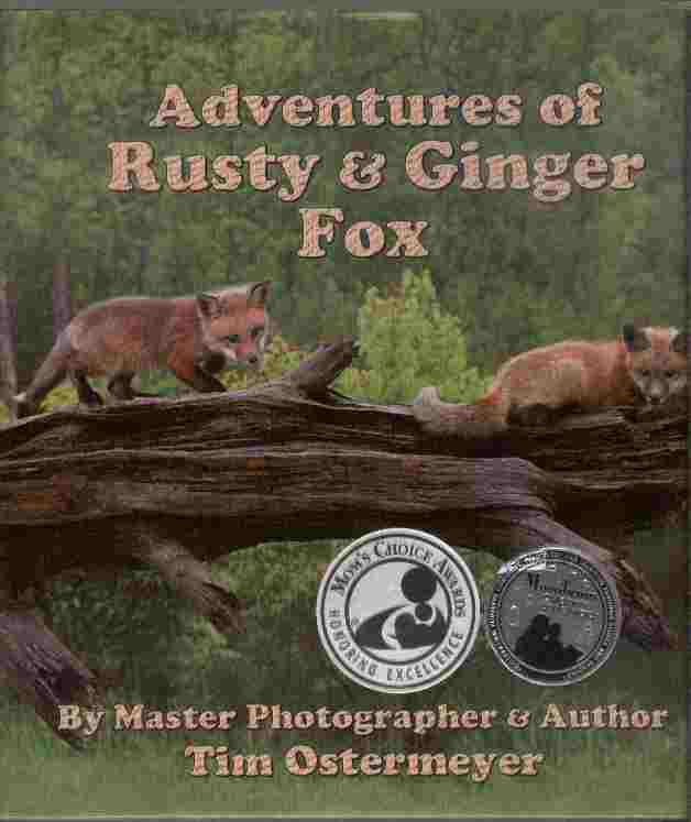 Image for Adventures of Rusty and Ginger Fox