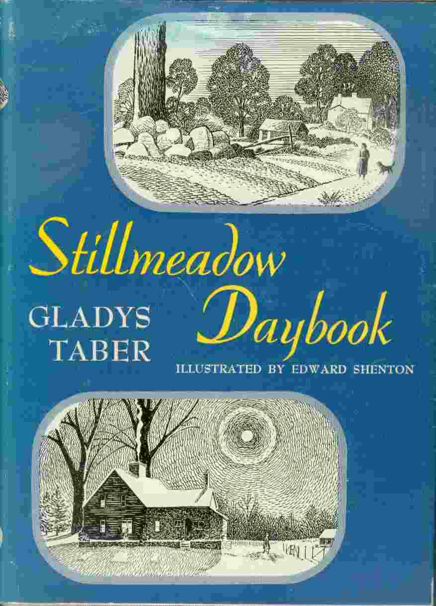 Image for Stllmeadow Daybook